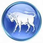 Taurus zodiac button icon, isolated on white background.