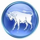 Taurus zodiac button icon, isolated on white background.