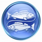 Pisces zodiac button icon, isolated on white background.