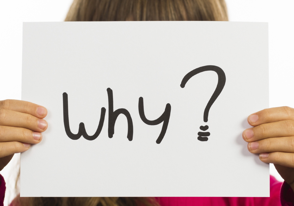 Studio shot of child holding a Why sign made of white paper with handwriting.