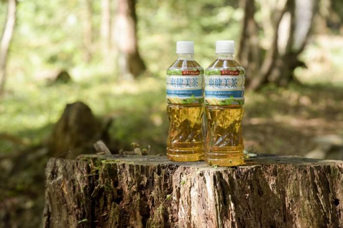 自然の力と爽健美茶でリフレッシュ!