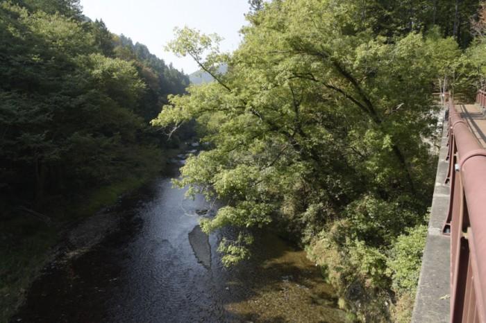 橋の下には美しい渓流が。