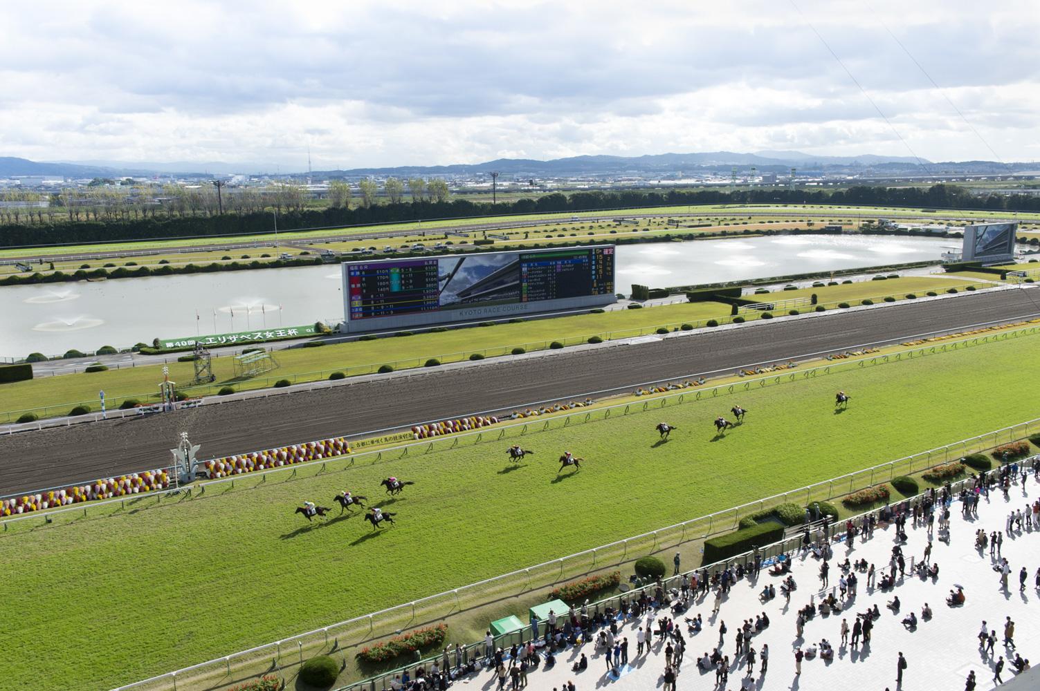 中央には噴水があり、自然豊かな京都競馬場。