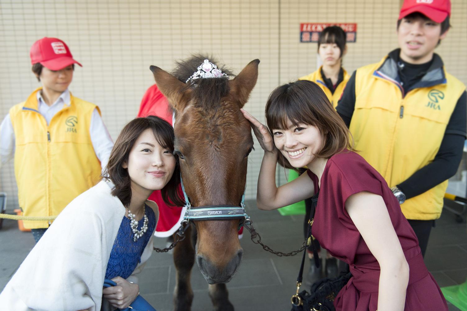 おとなしい木曽馬のタケトミもティアラを☆