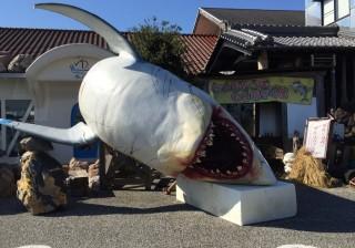 【れストラン ゆず庵】かつおのたたきパフェを食す!in 高知