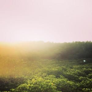 【タイ旅行記】vol.11美しき大自然と美味しいタイ料理。ラヨーンの旅。