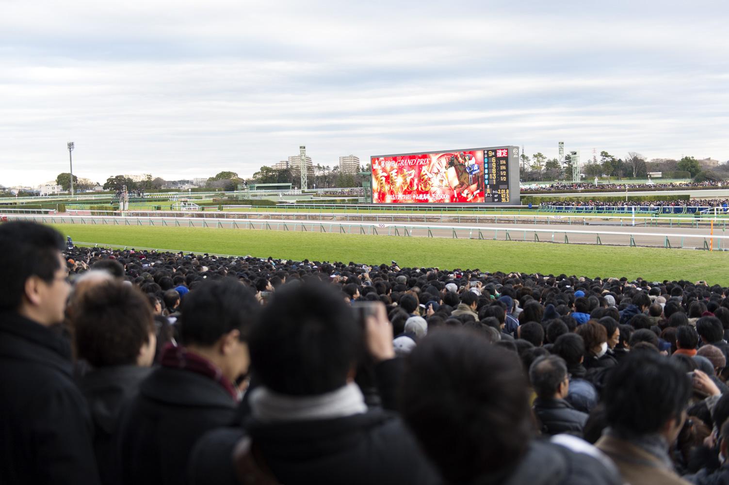 2015年のGIレースを締めくくる有馬記念が始まります。