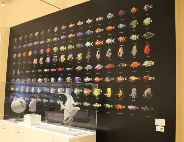 ピクサーニモ魚たち