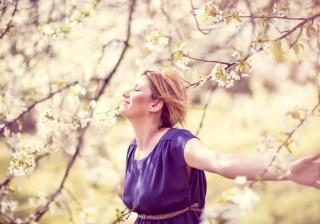 【B型】「きれいな桜を一人で眺めて運気を回復」