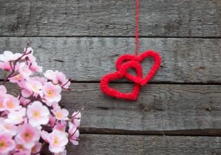 【御瀧政子の血液型占い】お花見でlove運キャッチ♪【3/28〜4/3の運勢】