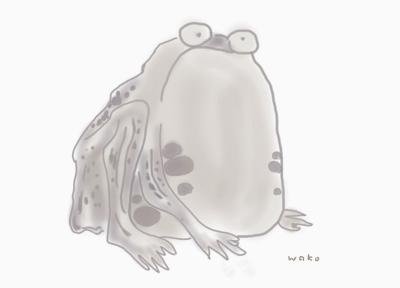 若冲蛙 (640x460) (400x288)