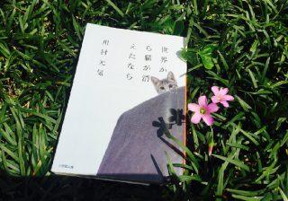 【映画化決定!】川村元気さんの『世界から猫が消えたなら』を、丸の内OLが読んでみた。