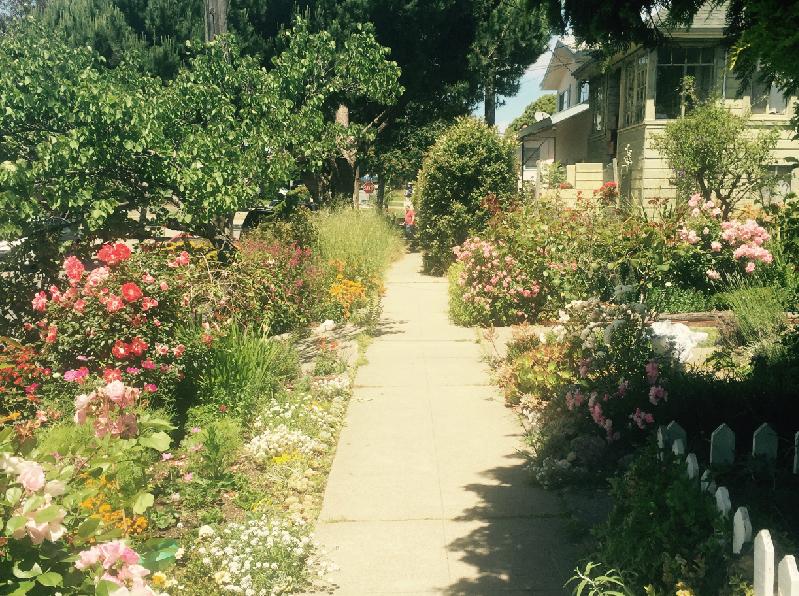 リフレッシュしたいときは、少し遠回りして花であふれるお気に入りのこの道を通って帰ります。