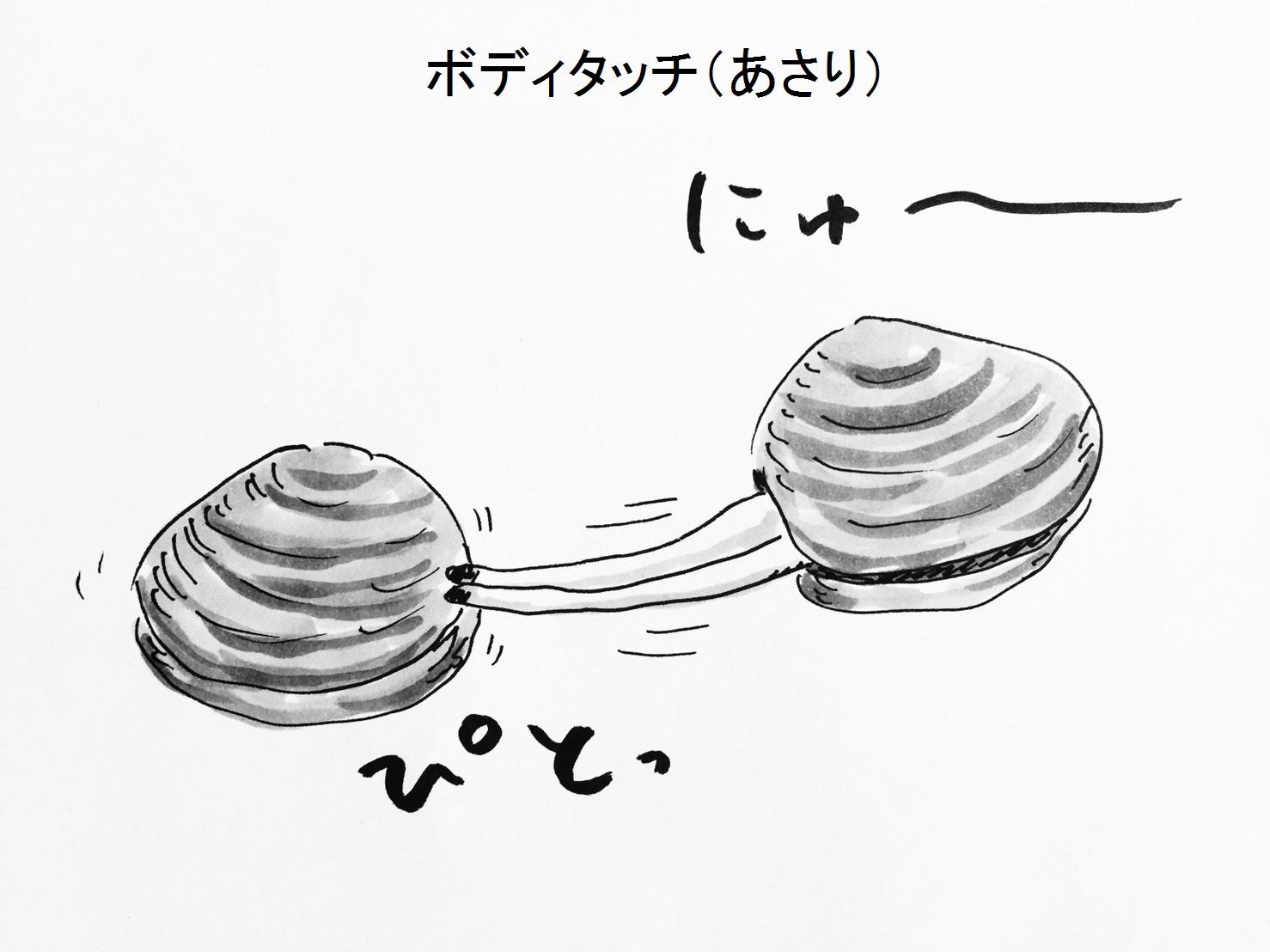 ボディタッチ(あさり)