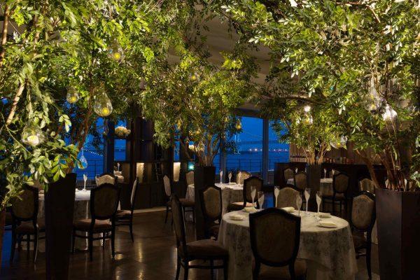木々が生い茂る部屋で、森の中にいるような感覚に。