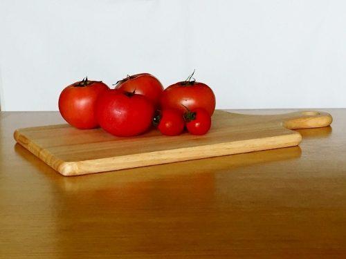 カメラテク良いトマト順光 (500x375)