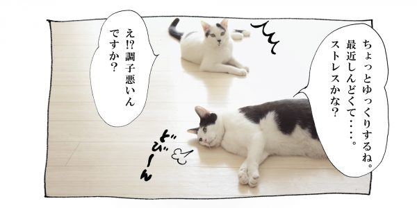 pg_015_1