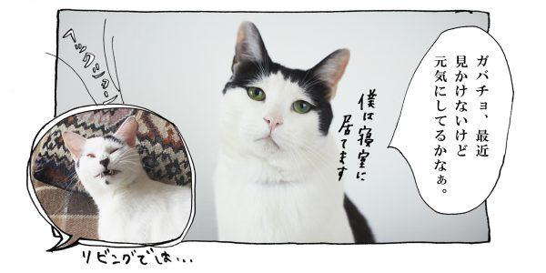 pg_017_4