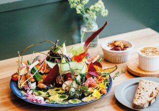 「野菜愛」溢れるシェフが作る! お野菜至上主義サラダ