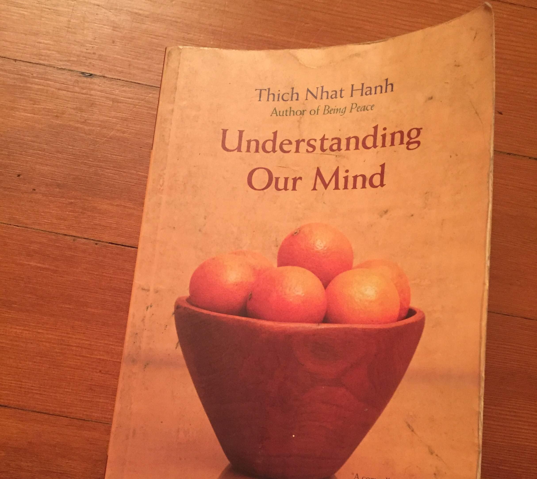 『Understanding Our Mind』ティク・ナット・ハン著。プラムヴィレッジでの合宿中にシスターに教えてもらって購入。毎晩読んでいるうちにボロボロになった。
