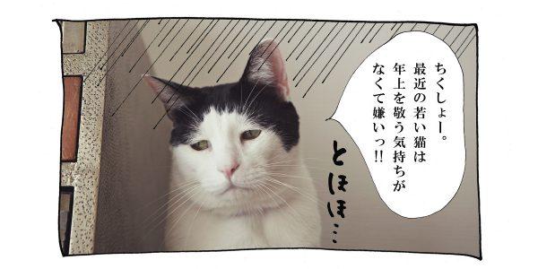 pg_022_4