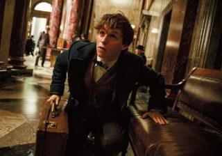 34歳エディ・レッドメインが大興奮!「魔法の映画」で嫌なことをぶっ飛ばせ!!