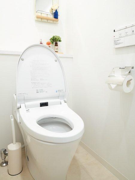 トイレの神様に感謝を込めて。