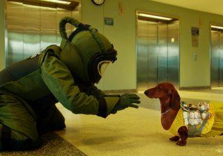 倫理観が問われる! ブラックユーモア満載の問題作 『トッド・ソロンズの子犬物語』!