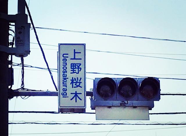 IMG_8716 (640x467)