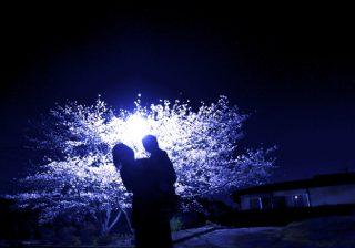 【春満開、花満開、エロ満開!】春の「ワンナイトラブ」エピソード2つ