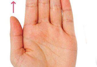気になる人に「手を出して」と言ってみて! カンタン手相観を伝授