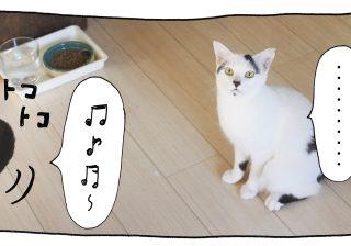 【猫写真4コママンガ】パンチョとガバチョ 「ご明察」#49