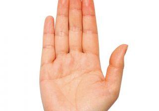 「甘え上手」は? 「ムードメーカー」の人は? 手の形で人間性をチェック!