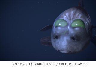 ギョッかわいい♡ 科博で水深6000m級の魚たちに会ってきた!