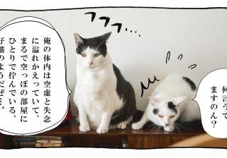 【猫写真4コママンガ】「詩人?」パンチョとガバチョ #60