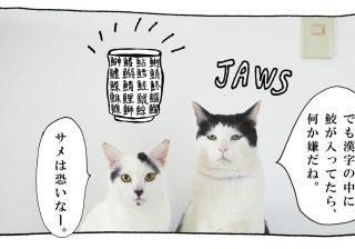 【猫写真4コママンガ】「魚偏」パンチョとガバチョ #63