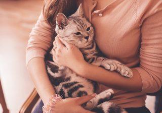 男を不愉快にさせる…「ペット溺愛」アピール女|実は「モテを逃している」痛い女の特徴 #11