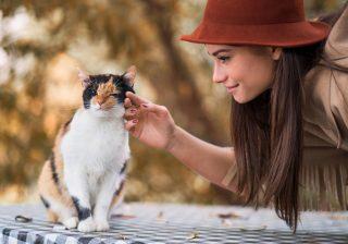 猫と話している…男性が女性の性格の良さを感じ取るポイント3選