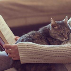 年末年始、退屈にならない…図書館ネットサービスを使った読書のススメ