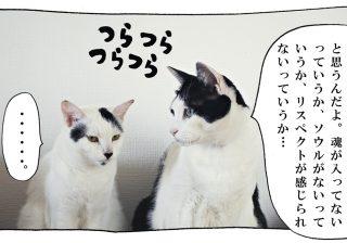 【猫写真4コママンガ】「教訓」パンチョとガバチョ #77
