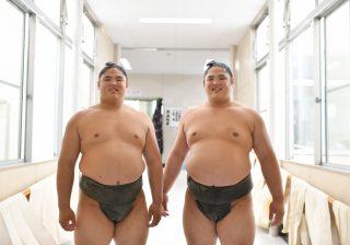 爆笑解説…初の双子関取・貴源治関「僕らの見分け方」『大相撲観戦ガイド』裏話その3
