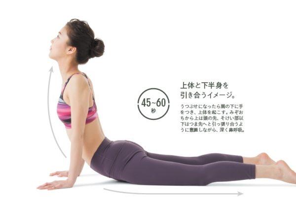 36sokeibu