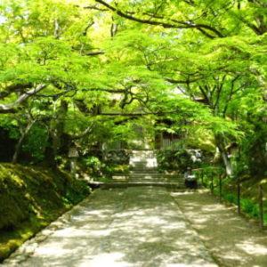春夏は京都へ...意外と知られていないパワースポット! 『嵐山』穴場案内