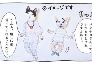 【猫写真4コママンガ】「ファッショニスタ」パンチョとガバチョ #90