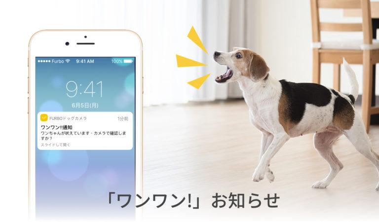 barking-alert-jp