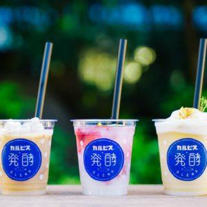 カラダに嬉しい!発酵食品とコラボした「カルピス®︎+発酵BLEND@東京日本橋」が開催