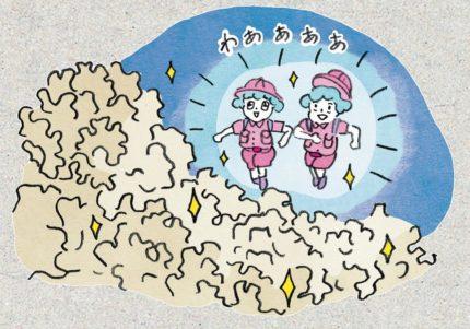 """""""幻のキノコ""""が女子の救世主! 日本発のスーパーフードが気になる"""