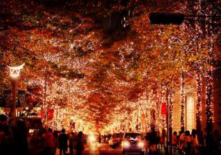 イルミで胸キュンキュン!ラブムード満開の最新クリスマスデート