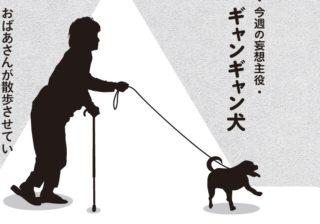 動物で一番好きなのに…犬が劇作家にブチギレ、噛みつかれる!?