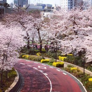 春の桜デートに…笑い&お宝を楽しめる六本木のアート展2選